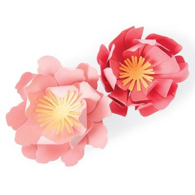 Sizzix Bigz Die - Summer Blooms 663860
