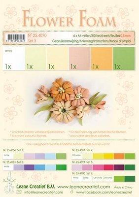 Leane Creatief Flower Foam Assortiment  3 - Zalm 25.4070