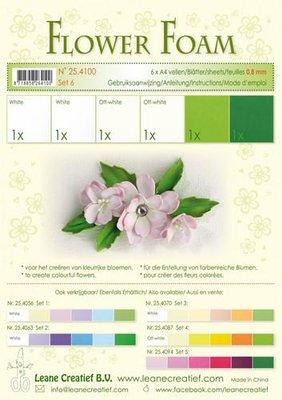 Leane Creatief Flower Foam Assortiment  6 - Wit-Groen 25.4100