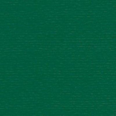 Papicolor Karton Original A4 - Dennengroen 301950
