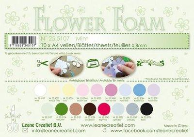 Leane Creatief Flower Foam - Mint 25.5107