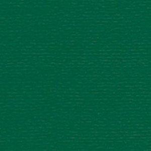 Papicolor Scrapbook Original 302 x 302 mm - Dennengroen 298950