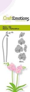 CraftEmotions Die - Orchidee met lange steel 3D